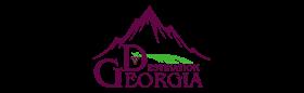 Destination Georgia