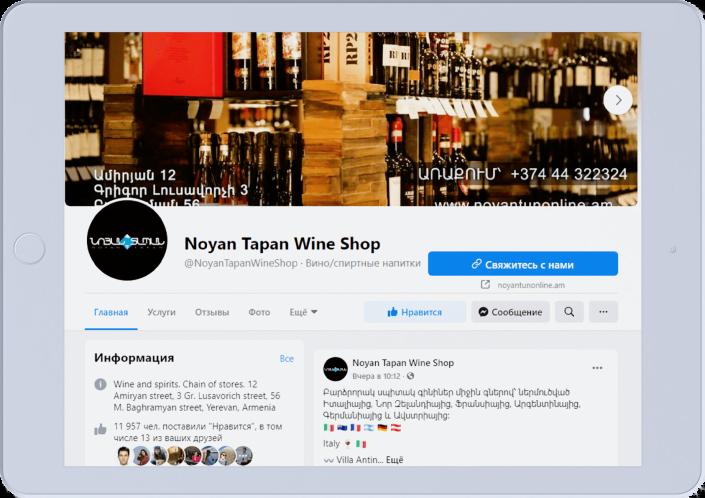 Noyan Tapan - Websiete development
